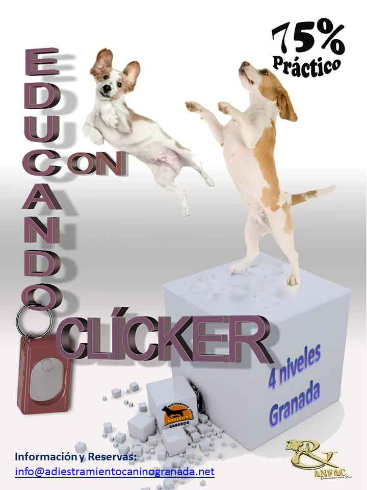 EDUCANDO CON CLICKER